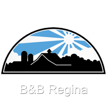 B&b Regina | Bed and Breakfast e Casa Vacanze a Busto Arsizio, Varese, Castellanza | immagine logo slide